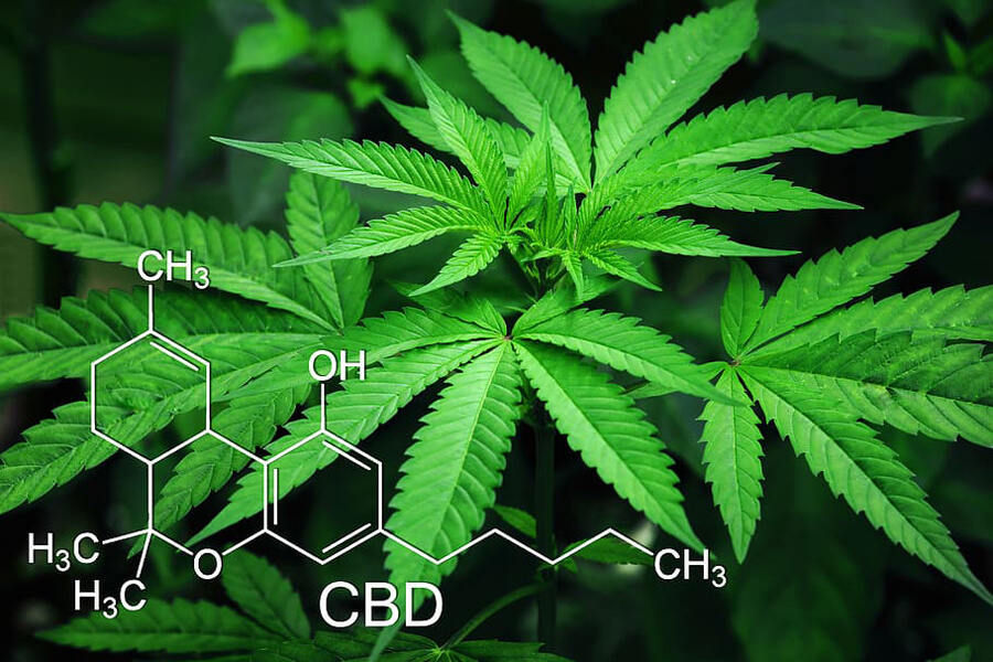 CBD, Cannabidiol, chemical structure and cannabis